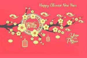CNY card 2019