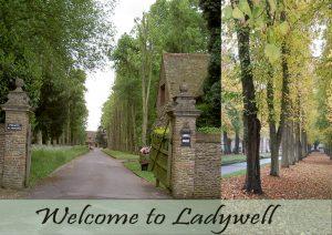 Ladywell web 2018