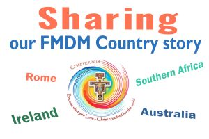 sharing our FMDM story